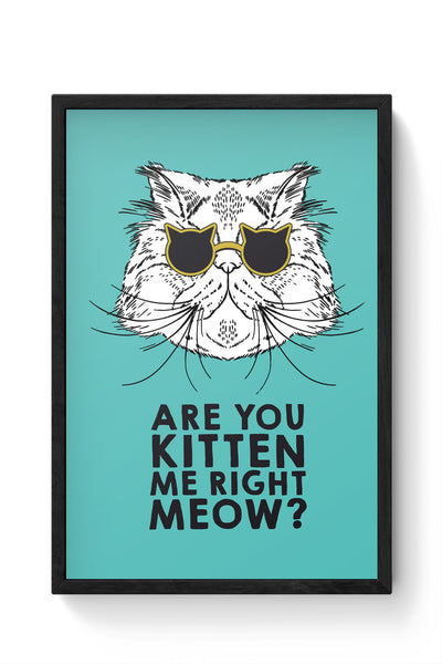Framed Posters Online India | Are You Kitten Me Right Meow? Laminated Framed Poster Online India