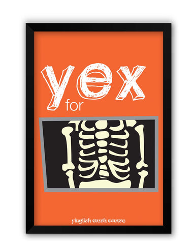 Framed Posters | Yex For X-Ray Yinglish Crash Course Laminated Framed Poster Online India