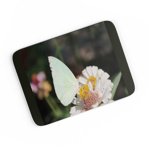 Butterfly Nature A4 Mousepad Online India