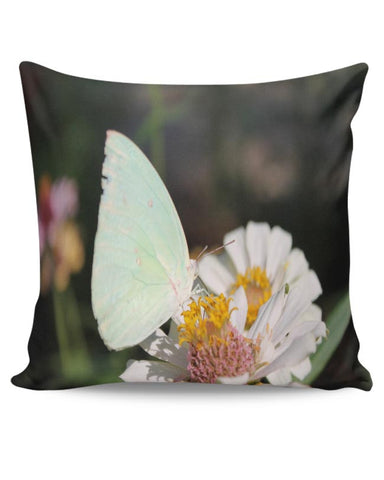 Butterfly Nature Cushion Cover Online India