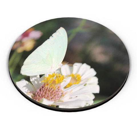 Butterfly Nature Fridge Magnet Online India