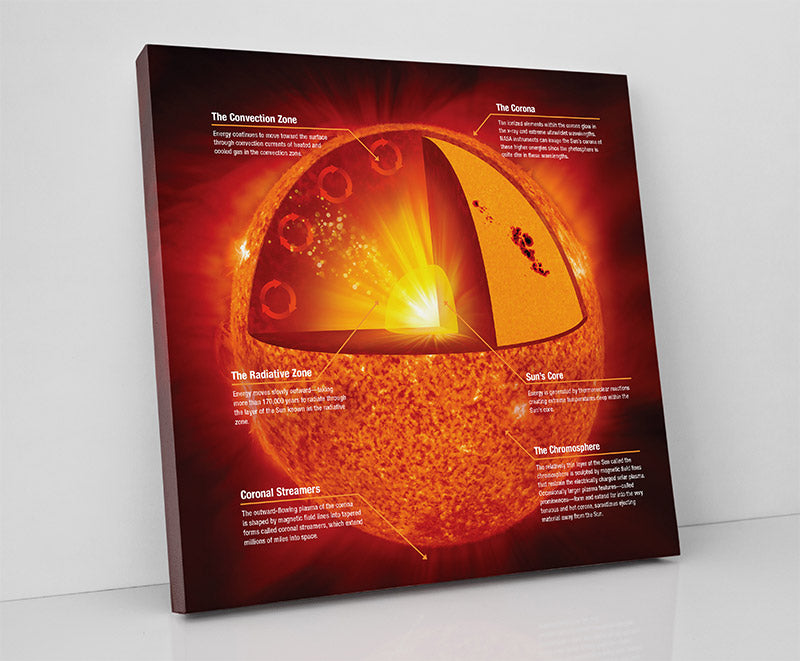 """""""Anatomy of the Sun,"""" astronomy science infographic. Canvas wall art in room."""