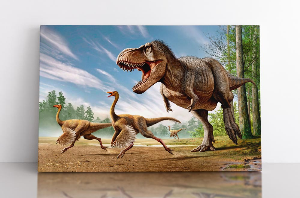 Tyrannosaurus rex hunting Struthiomimus dinosaurs, canvas art in room.