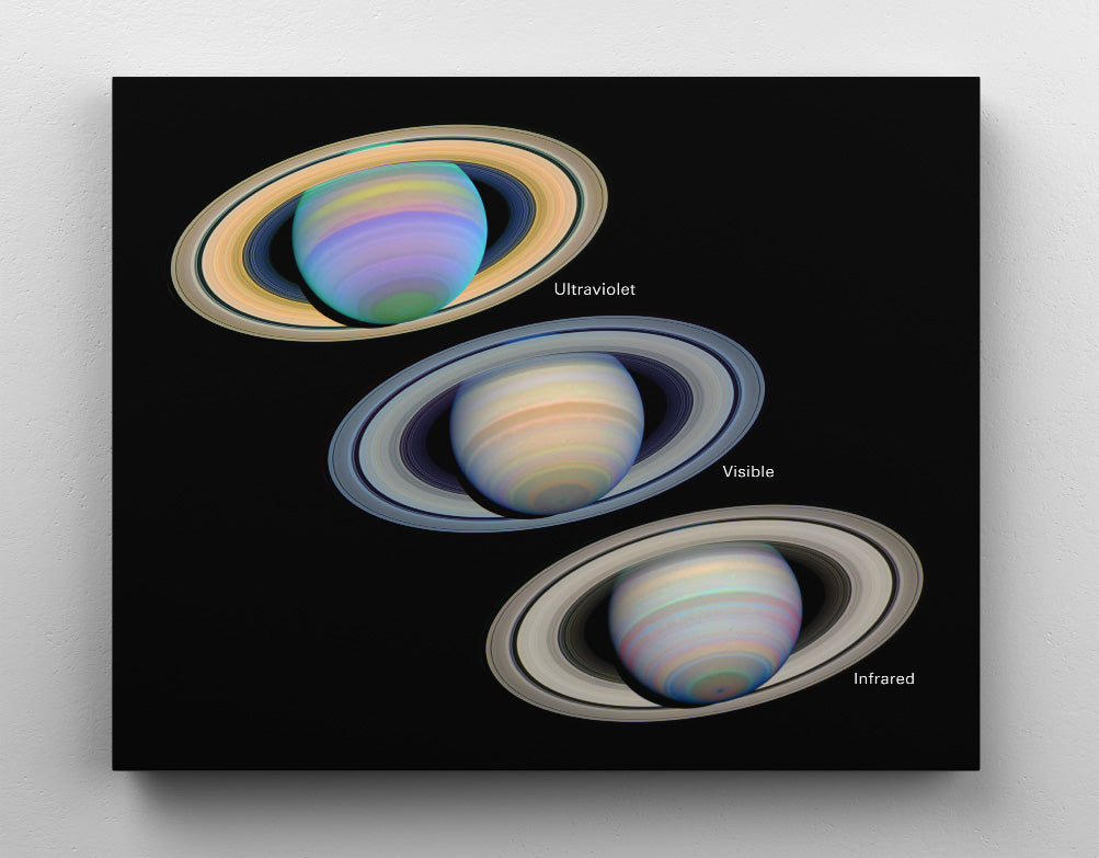 Planet Saturn and its rings seen at different wavelengths, Hubble Space Telescope image series. Canvas wall art in room.