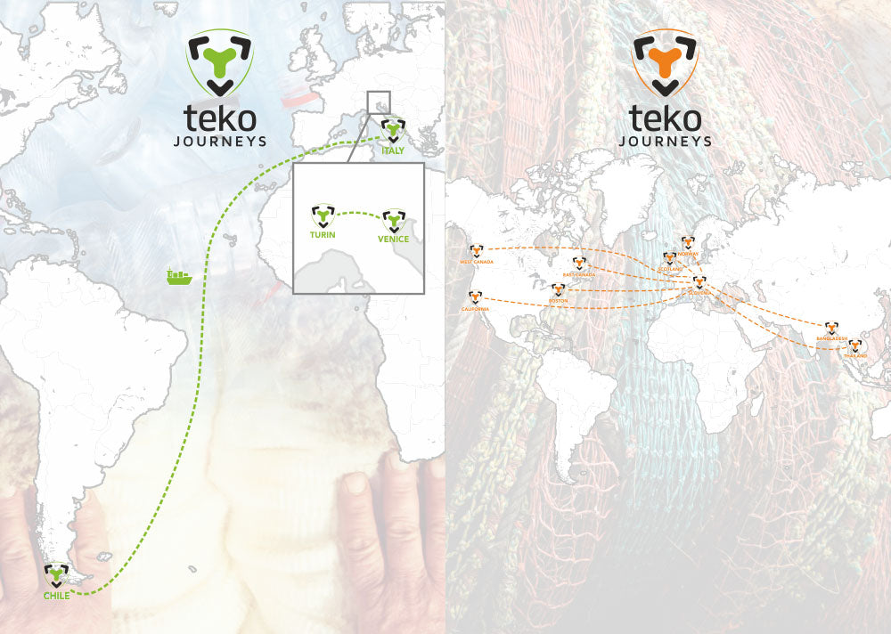 Teko Socks | Journeys from sheep to foot
