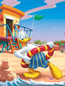 Diamond Painting Donald Duck Zomer