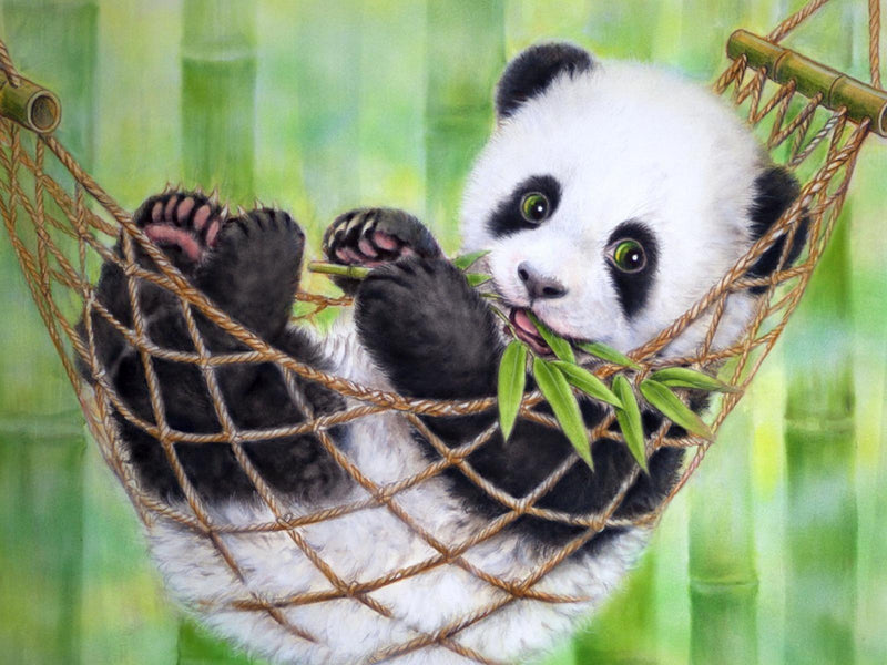 Diamond Painting Panda baby