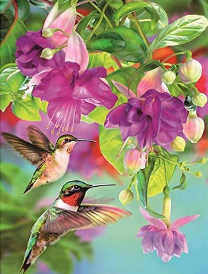 Diamond Painting Humingbirds