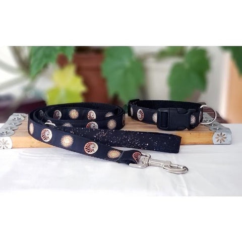 Golden Sun and Moon Leash and Collar Set