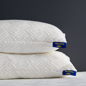 Enther Shredded Memory Foam Pillows with Machine Washable Bamboo Cover