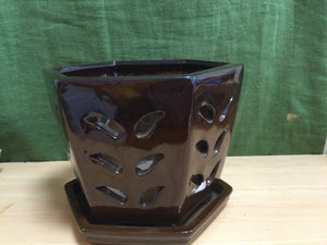 Orchid pot brown