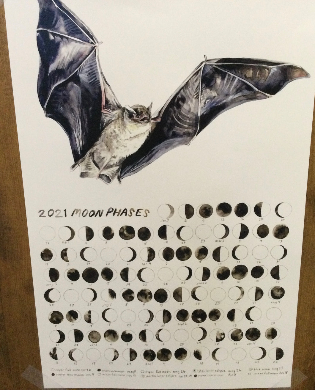 Poster moon phases with bat
