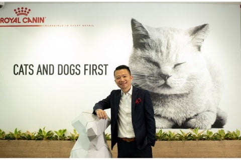 royal canin kibble with cat image