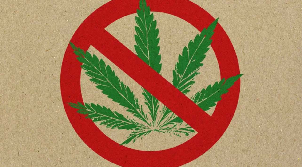 Hemp Leaf with Prohibited Red Sign on a Brown Background