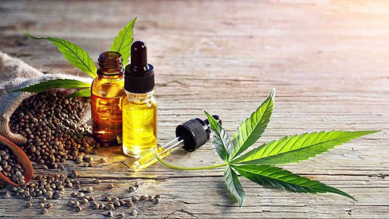 Hemp seeds and oil extract with cannabis leaf