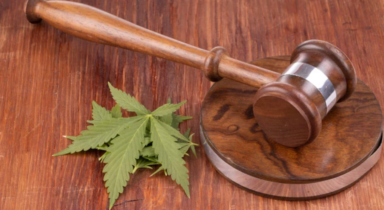 Gavel with Hemp Leaves on the Wooden Surface