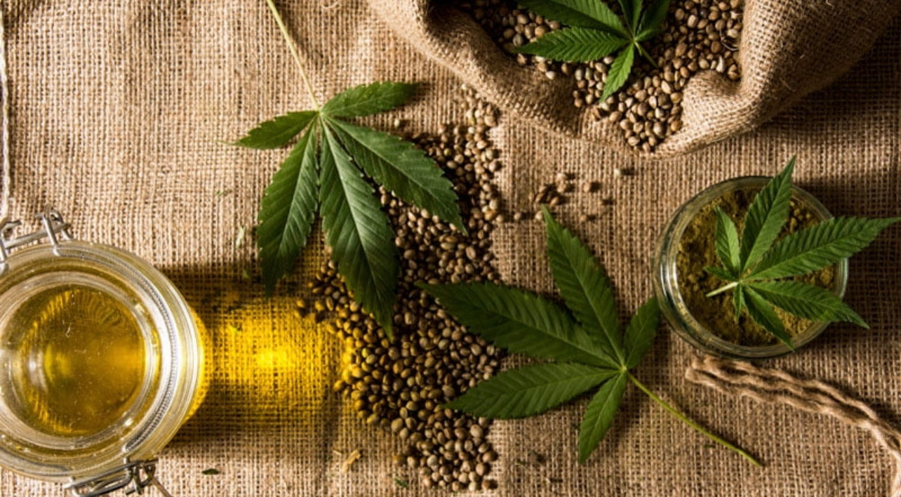 Hemp Leaves with Hemp Seeds and Oil in a Knit Clothes