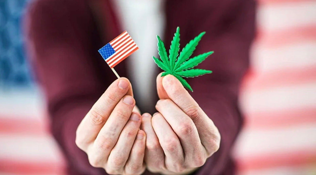 woman holding a small American flag and a hemp leaf with a big US flag behind