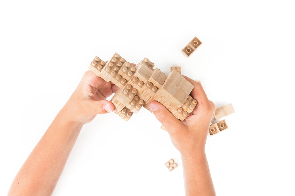 Eco-bricks ™ Bamboo Dinosaur Build Set
