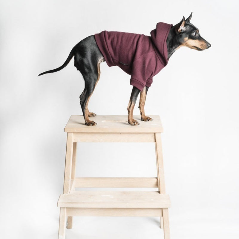 Pet Dog Hooded Sweatshirts Chihuahua Hoodie Winter Warm Dog Coats Pet Clothes