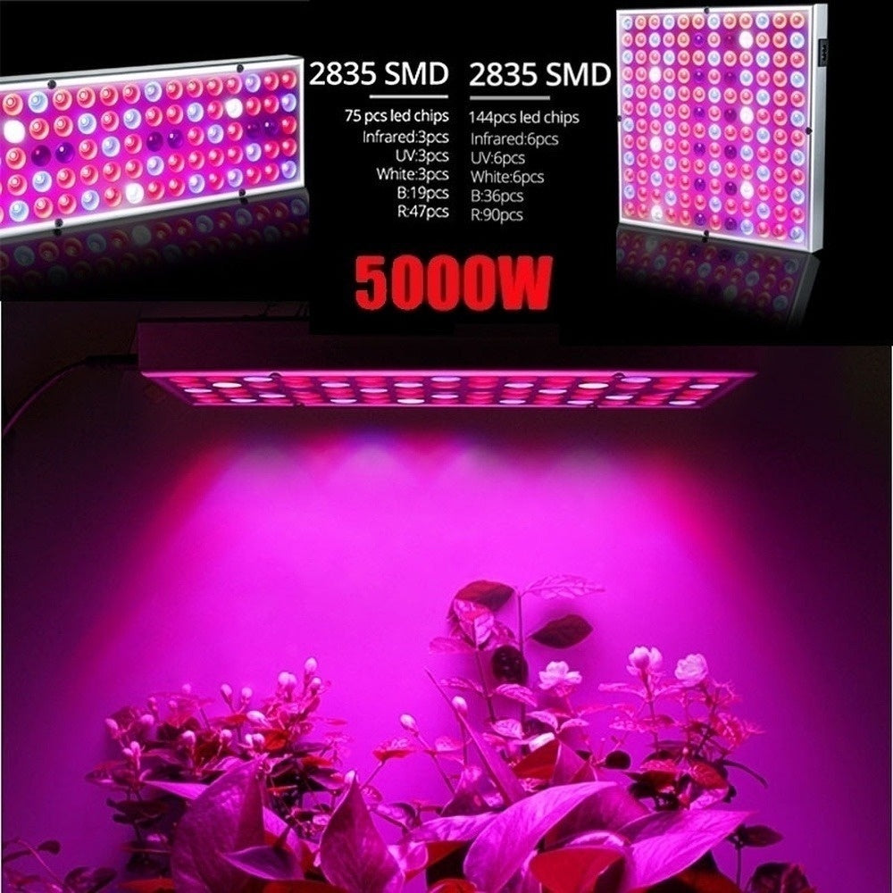 5000W Harmless Full Spectrum LED Plant Grow Light Veg Bloom Lamp Indoor Greenhouse Garden With Switch-STAI
