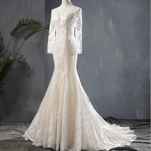 Beige Fishtail Mermaid Appliqued Lace Wedding Dress