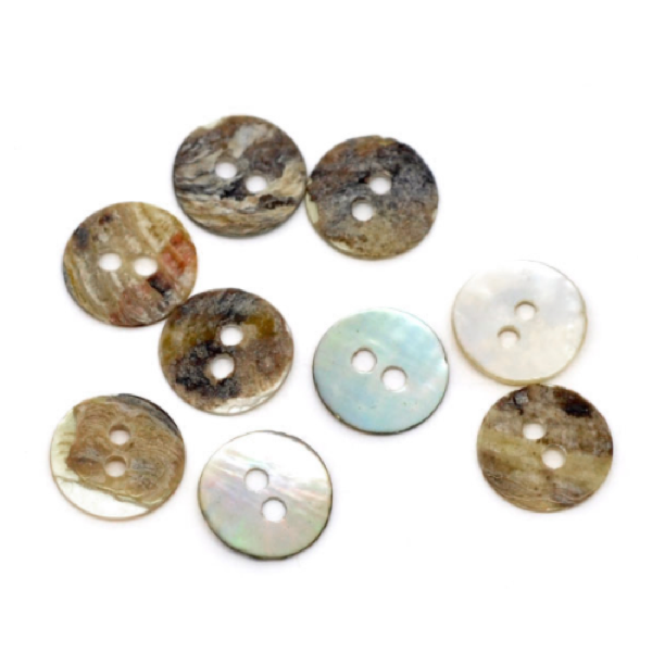 Buttons: Shell Round 2 Hole Natural 11mm