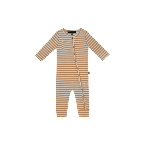 Rib galli |  stripe