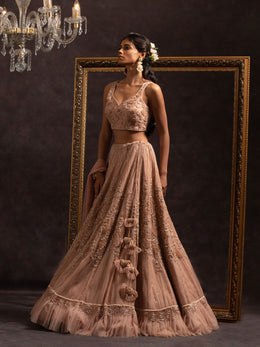 Lehenga Set with Net Embellished Blouse