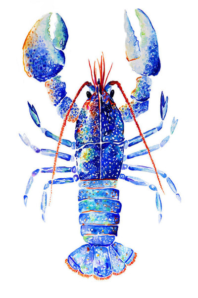 Print {Kaleidoscope Lobster}