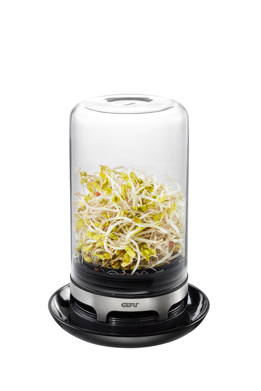 Sprouting Jar - BIVITA