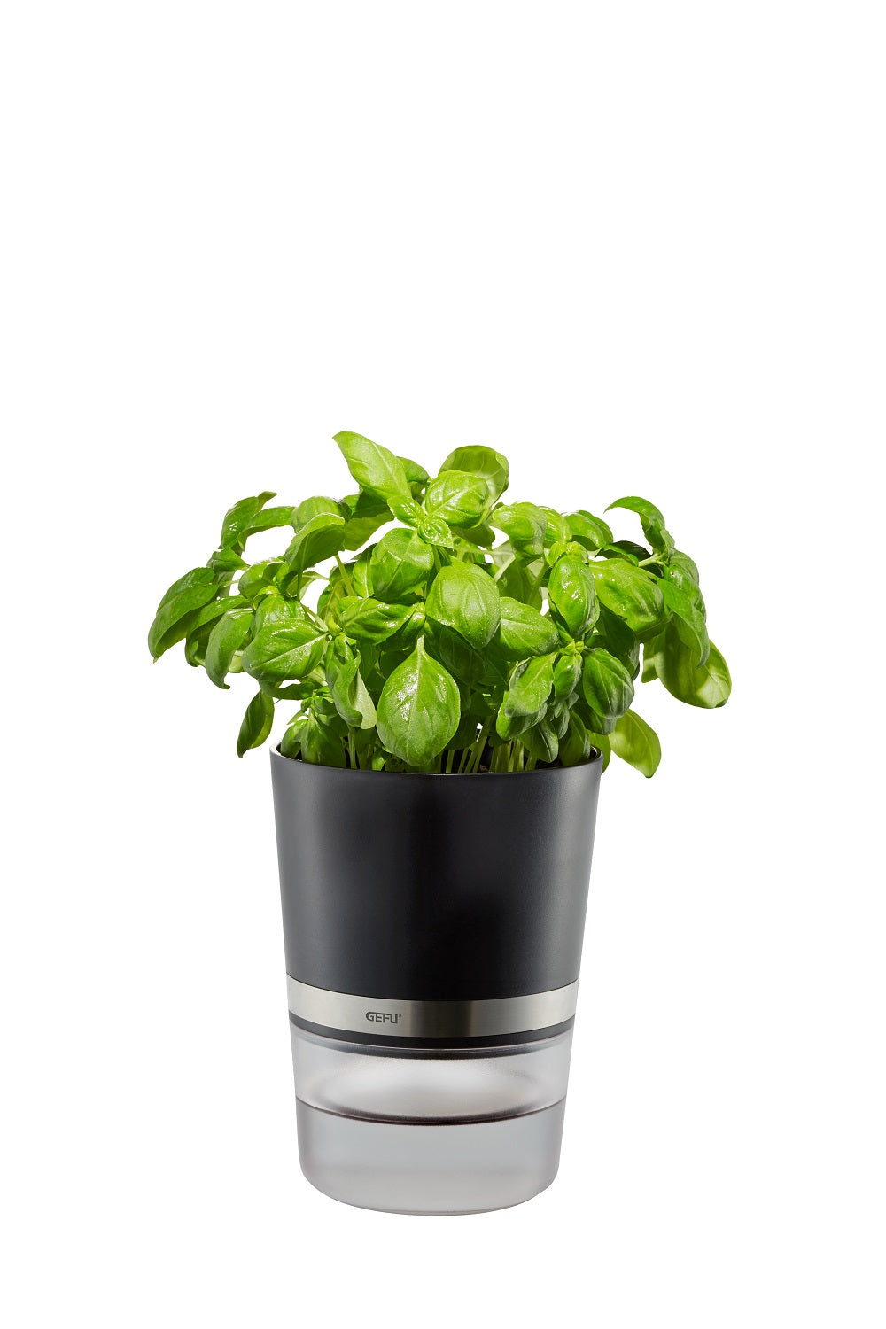 Herb Pot - BOTANICO