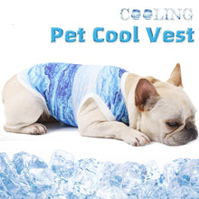 Load image into Gallery viewer, Dog Cooling Vest