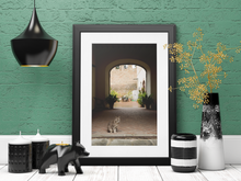 Load image into Gallery viewer, Grey Cat Under Italian Archway Photo Download