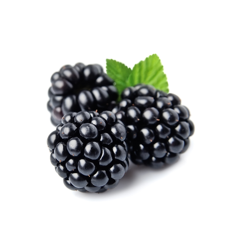 Blackberry Punnet