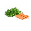Carrot French Bunch