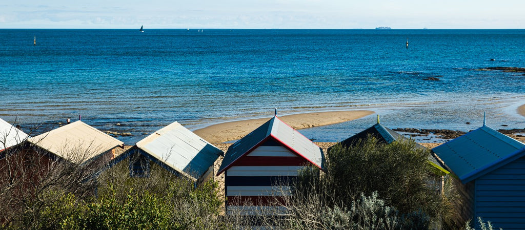 Bathing Shed Blog #3 - The Flora and Fauna Around the Port Phillip Bay Area