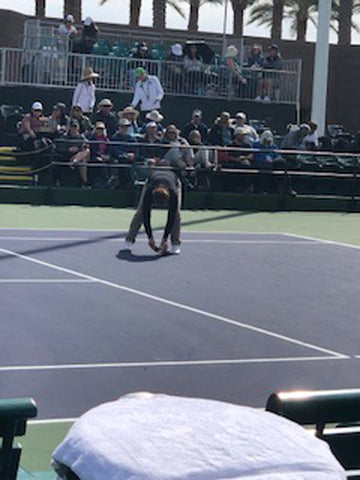 Chair umpire picking up bugs on the court at Indian Wells BNP Paribas