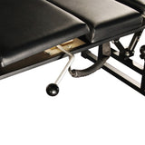 Professional Deluxe Portable Chiropratic Table Arena-120