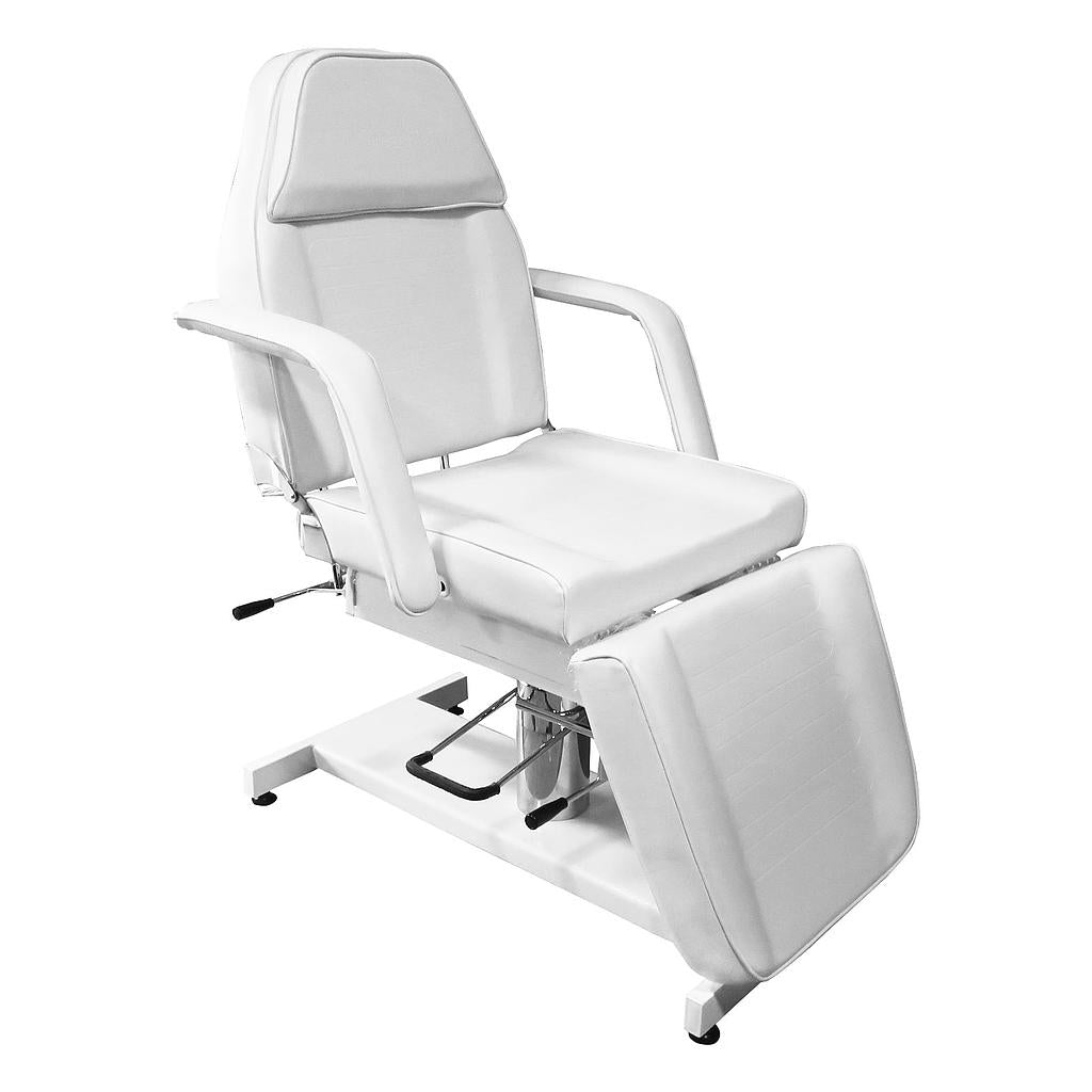 SPA Beauty Hydraulic Facial Table Tatoo Chair (H911) - Greenlife