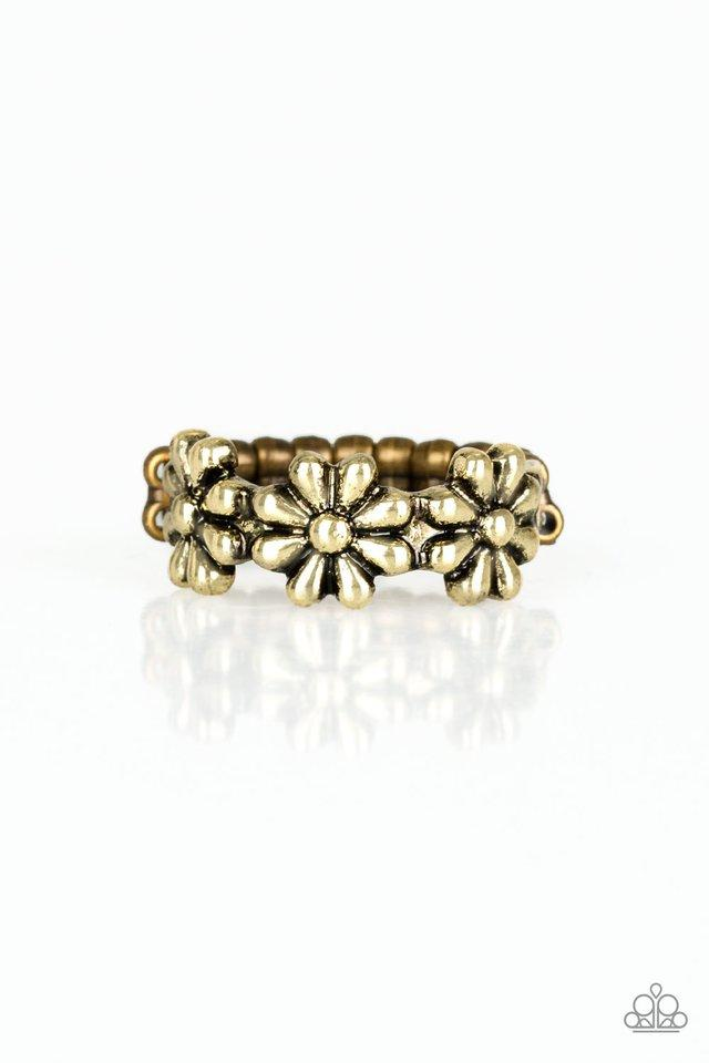 Paparazzi Ring ~ Daisy Dapper - Brass