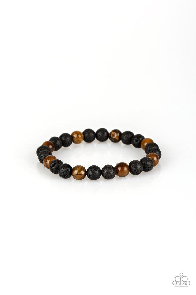 Paparazzi Bracelet ~ Top Ten Zen - Brown