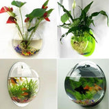 Wallium - Wall Mounted Acrylic Fish Bowl