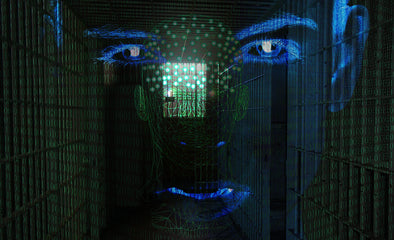 Real-life Big Brother? Research team want to observe ex-convicts with use of AI