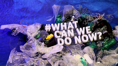 Plastic waste will cover land and water by 2040 despite maximum efforts