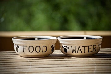 Two food bowls with the words FOOD and WATER stand on a bamboo mat