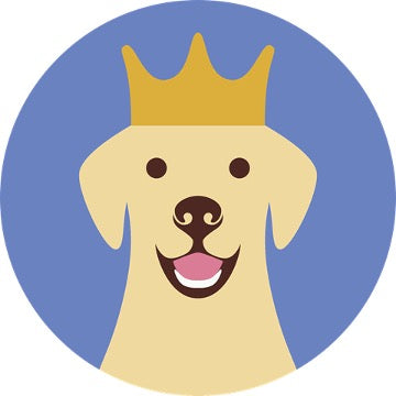The print of Labrador retriever with crown on his head