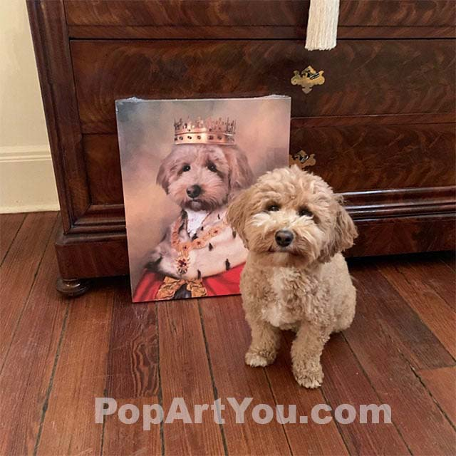The Cavapoo sits on the floor next to a portrait depicting him dressed as a Lord