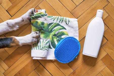 Dog paws, towel, brush and white bottle on brown floor