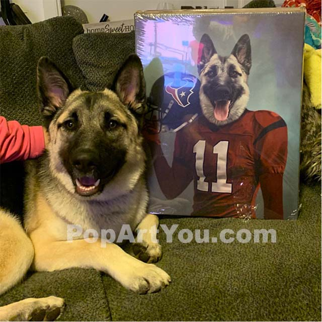 A German Shepherd dog lies next to his portrait, which depicts him as an American football player